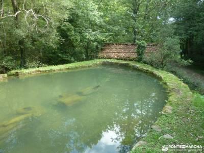 Parque Natural Pagoeta_Valle Leitzaran;senderismo fuerteventura senderismo ronda almenara madrid las